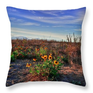 Throw Pillow featuring the photograph Meadow Of Wild Flowers by Eti Reid