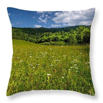 Black Rock Mountains Throw Pillow