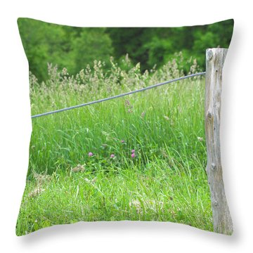 Meadow's Edge Throw Pillow