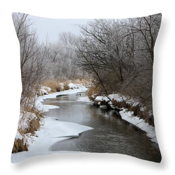 Meandering Geese Throw Pillow by Debbie Hart