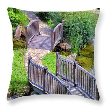 Meandering Pathway Throw Pillow