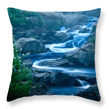 Meandering Stream Throw Pillow by Chris McKenna