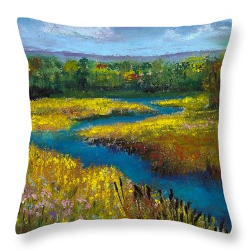 Meandering Stream Throw Pillow by David Patterson