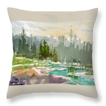 Meandering Stream Throw Pillow by Mohamed Hirji