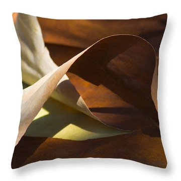 Mebius Strip Throw Pillow