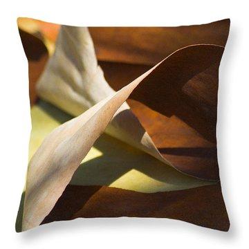 Mebius Strip Throw Pillow