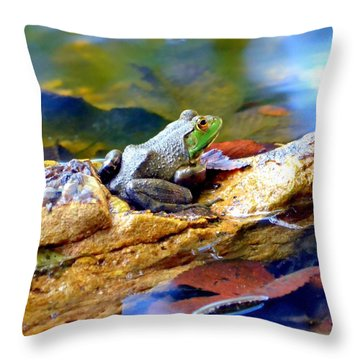 Throw Pillow featuring the photograph Meditation by Deena Stoddard