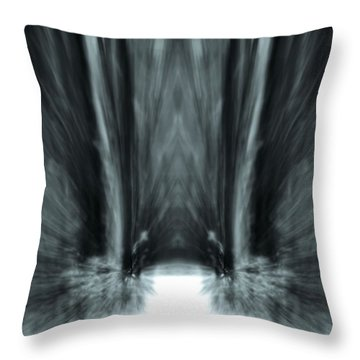 Meditation In The Forest Throw Pillow by Dan Sproul