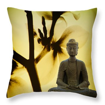 Throw Pillow featuring the photograph Meditation by Joseph Hollingsworth