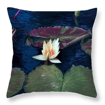 Throw Pillow featuring the photograph Meditation Of Nature by John Rivera