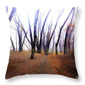Meditation On Fear Throw Pillow
