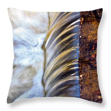 Zen Weir Throw Pillow