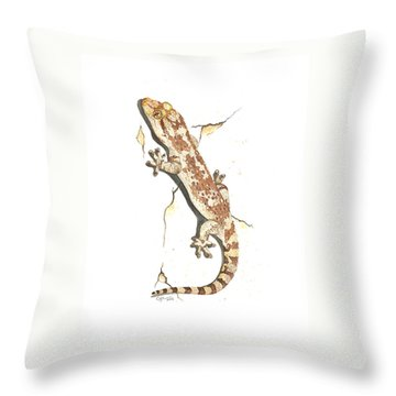 Mediterranean House Gecko Throw Pillow by Cindy Hitchcock