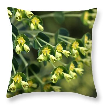 Mediterranean Spurge Throw Pillow by Joy Watson