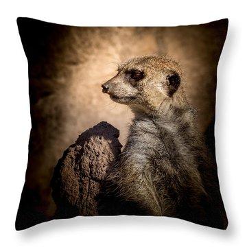 Meerkat 12 Throw Pillow by Ernie Echols