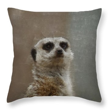 Meerkat 5 Throw Pillow by Ernie Echols