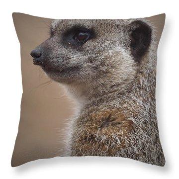 Meerkat 9 Throw Pillow by Ernie Echols