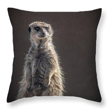 Meerkat Sentinel Throw Pillow by Ernie Echols