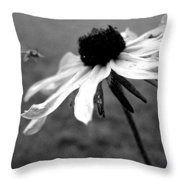 Meet In The Middle Throw Pillow by Gilbert Photography And Art