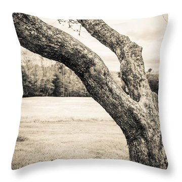 Meet Me Under The Old Apple Tree Throw Pillow by Edward Fielding