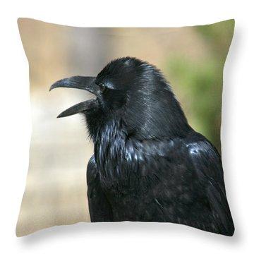 Meet My Friend   Where Did He Go Throw Pillow