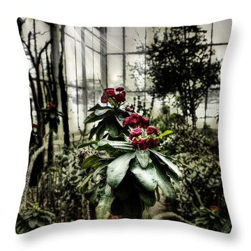 Throw Pillows Magnolia : Meijer Gardens Grand Rapids Michigan Photograph by Evie Carrier