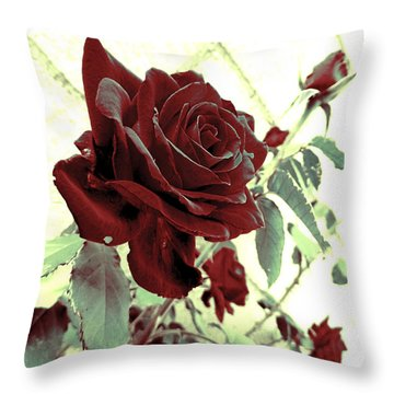 Melancholy Rose Throw Pillow