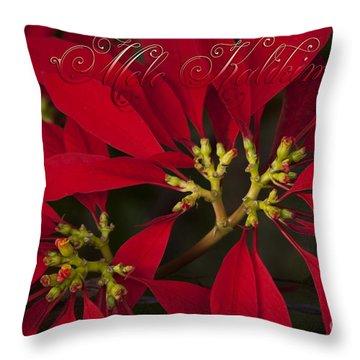 Mele Kalikimaka - Poinsettia  - Euphorbia Pulcherrima Throw Pillow by Sharon Mau
