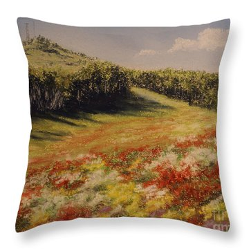 Melkow Trail  Throw Pillow