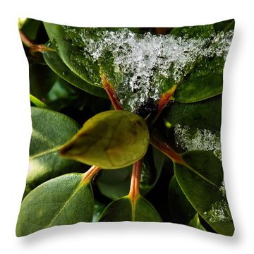 Throw Pillow featuring the photograph Melting Crystals by Robyn King