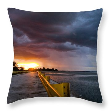 Melting Point Throw Pillow by Davorin Mance