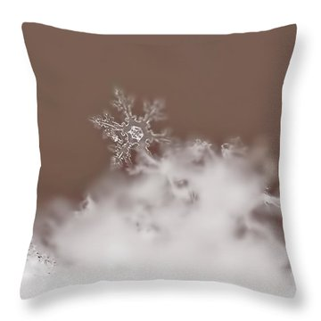 Melting Slowly Throw Pillow by Rona Black
