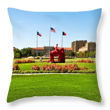 Throw Pillow featuring the photograph Memorial Circle by Mae Wertz