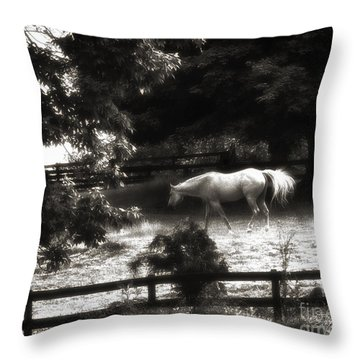 Memorial Day Reflection Throw Pillow by Cris Hayes