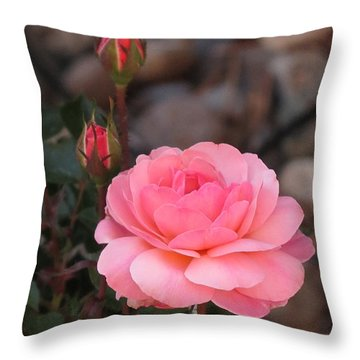 Memorial Day Rose Throw Pillow by Phyllis Kaltenbach