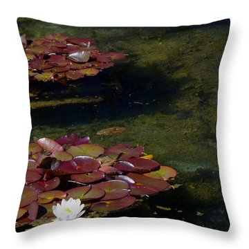 Memories Of Monet Throw Pillow by Marilyn Wilson