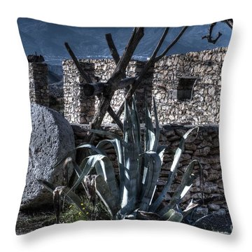 Memories Of The Past Throw Pillow by Heiko Koehrer-Wagner