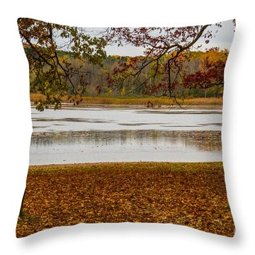 Mendon Ponds Throw Pillow by William Norton