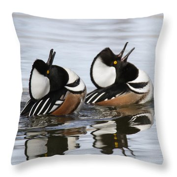 Merganser Display Throw Pillow by Angie Vogel