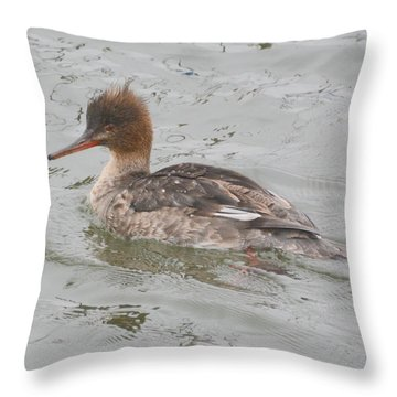 Merganser Hen Throw Pillow by Dan Williams