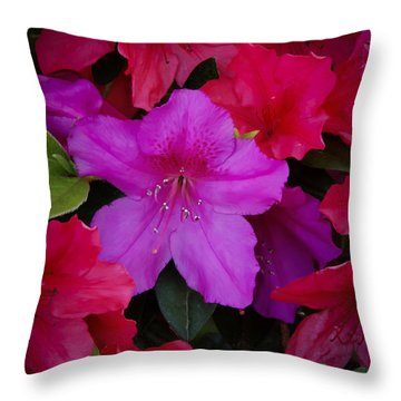Merging Azaleas 2 Throw Pillow