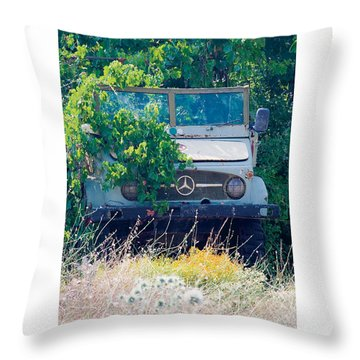 Merky Past Beautifully Distressed Poster Throw Pillow by David Davies
