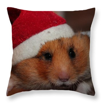 Merry Chirstmas Throw Pillow