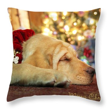 Merry Christmas From Lily Throw Pillow by Lori Deiter