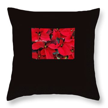 Merry Christmas And Hapy New Year  Throw Pillow