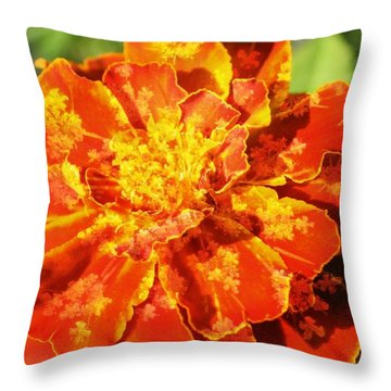Merry Marigold Throw Pillow