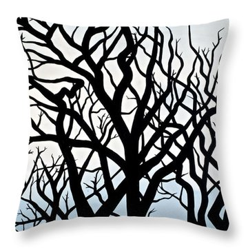 Mesa Verde Throw Pillow by Christine Belt