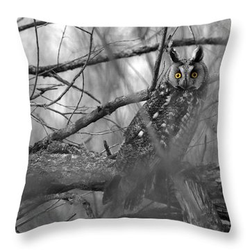 Mesmerizing Eyes Throw Pillow by James Peterson