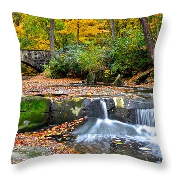 Mesmerizing Throw Pillow by Frozen in Time Fine Art Photography