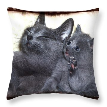 Mess With My Ma I'll Scratch Your Eyes Out Throw Pillow by Richard Thomas